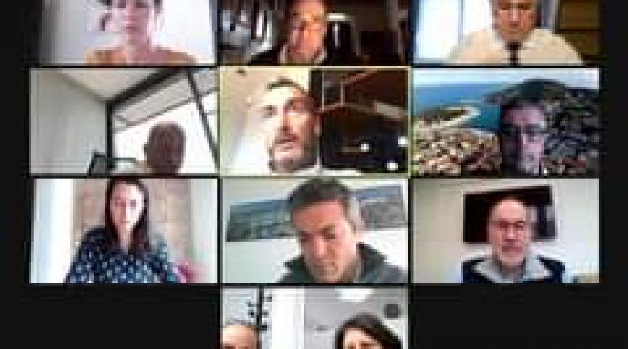 [Transfrontalier] Partage d'expérience sur la gestion de la crise sanitaire-Covi…