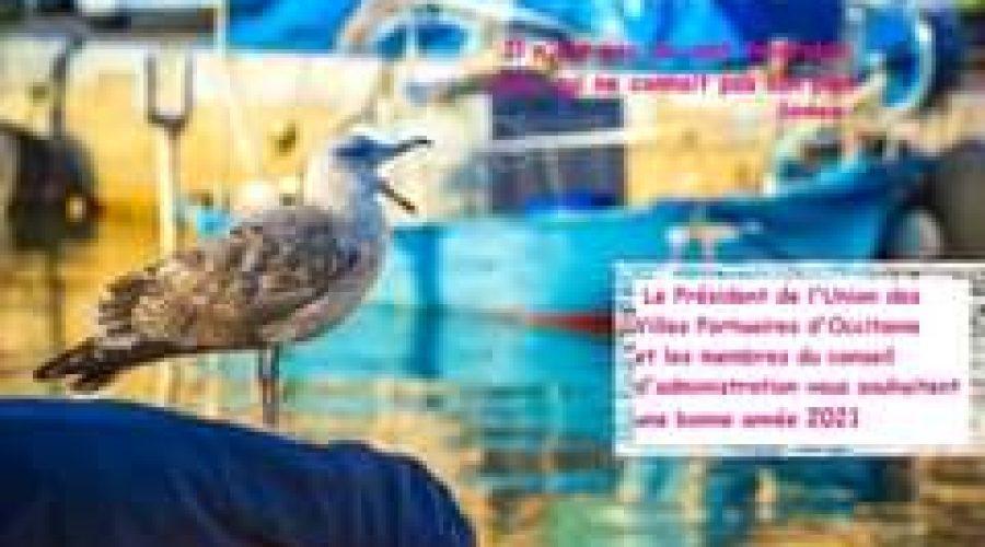 L'Union des Villes Portuaires d'Occitanie vous adresse ses meilleurs vœux!#port…